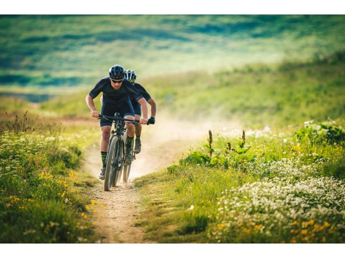 6S_19-merida-mountainbikes-big-nine-seven-carbon-lite-paralax.jpg