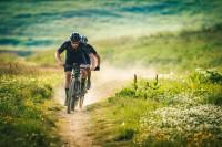 lb_19-merida-mountainbikes-big-nine-seven-carbon-lite-paralax.jpg